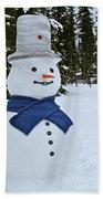 Frosty Alaskan Beach Towel