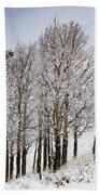 Frosty Aspen Trees Beach Towel