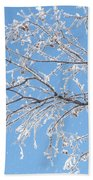 Frosty Branch Beach Towel