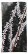 Frosty Branches Beach Towel by Carol Groenen