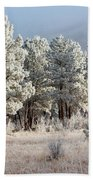 Frosty Pikes National Forest Beach Towel