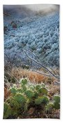 Frosty Prickly Pear Beach Towel