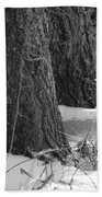 Frozen Black And White Beach Towel