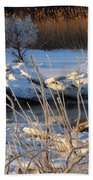 Frozen Fantasy  Beach Towel