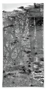 Frozen Reflection Beach Towel