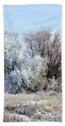 Frozen Trees By The Lake Beach Towel