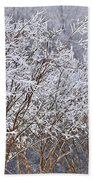 Frozen Trees During Winter Storm Beach Towel