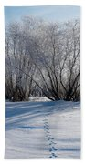 Frozen Views 4 Beach Towel
