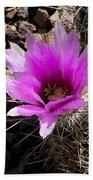 Fuchsia Cactus Blossom Beach Towel