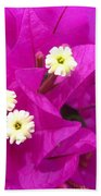 Fuchsia Flowers Beach Towel