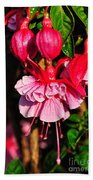 Fuchsias With Droplets Beach Towel