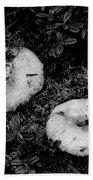 Fungi No 3 Bw Beach Towel