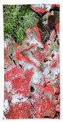 Fungus Amongst Us - Florida Palm Beach Towel