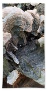 Fungus Beach Towel