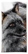 Funny Little Furry Face Beach Towel