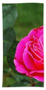 Fuschia Rose Beach Towel