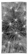 Fuzzy - Black And White Beach Towel