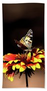 Gaillardia And Butterfly Beach Towel