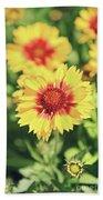 Gaillardia Flowers Beach Towel