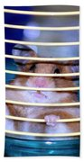 Gangster Hamster Beach Towel