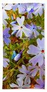 Flower Photography- Floral Art- Digital-floral Fireworks Beach Towel