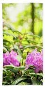 Garden Rododendron Bush Beach Towel