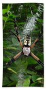 Garden Spider Beach Towel