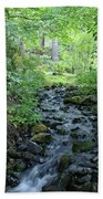 Garden Springs Creek In Spokane Beach Towel