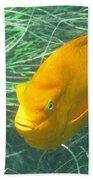 Garibali 2 Beach Towel