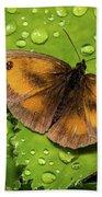 Gatekeeper Butterfly After The Rain. Beach Towel