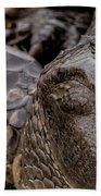 Gator Eye Beach Towel