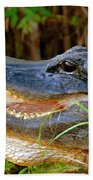 Gator Head Beach Towel