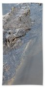 Gator IIi Beach Towel