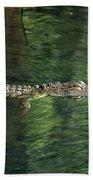 Gator In The Spring Beach Towel