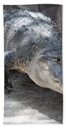 Gator On The Move Beach Towel