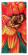 Gazania Beach Towel