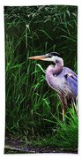 Gbh In The Grass Beach Towel
