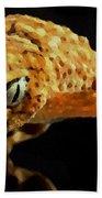 Gecko - Id 16218-130646-3343 Beach Towel