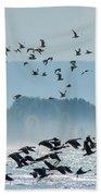 Geese And Gulls Beach Towel