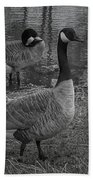Geese Together  Beach Towel