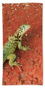 Geico Beach Towel
