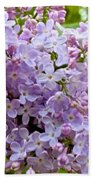Gentle Purples Beach Towel