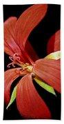 Geranium Flower Beach Towel