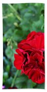 Geranium Flower - Red Beach Towel