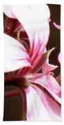 Geranium Herb Robert Beach Sheet