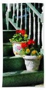 Geraniums And Pansies On Steps Beach Towel