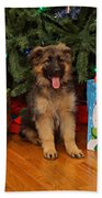 German Shepherd Puppy Card Beach Towel