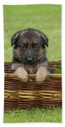 German Shepherd Puppy In Basket Beach Towel by Sandy Keeton