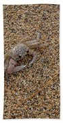 Ghost Crab Beach Towel