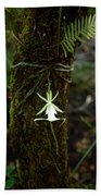 Ghost Orchid Of The Fakahatchee Strand Beach Towel